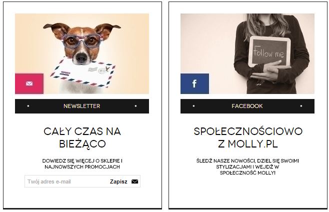 molly.pl - newsletter